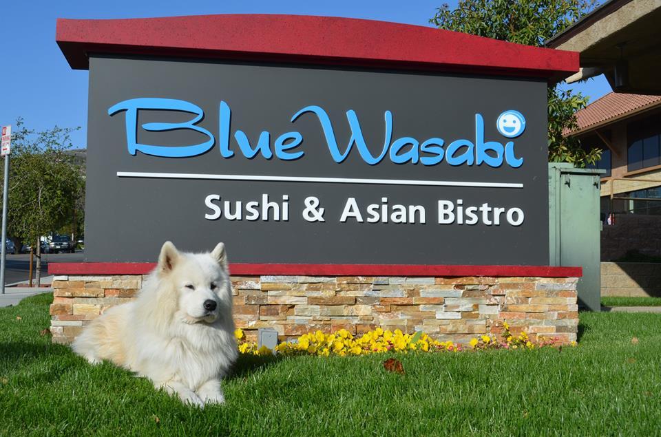 032914 wasabi restaurant