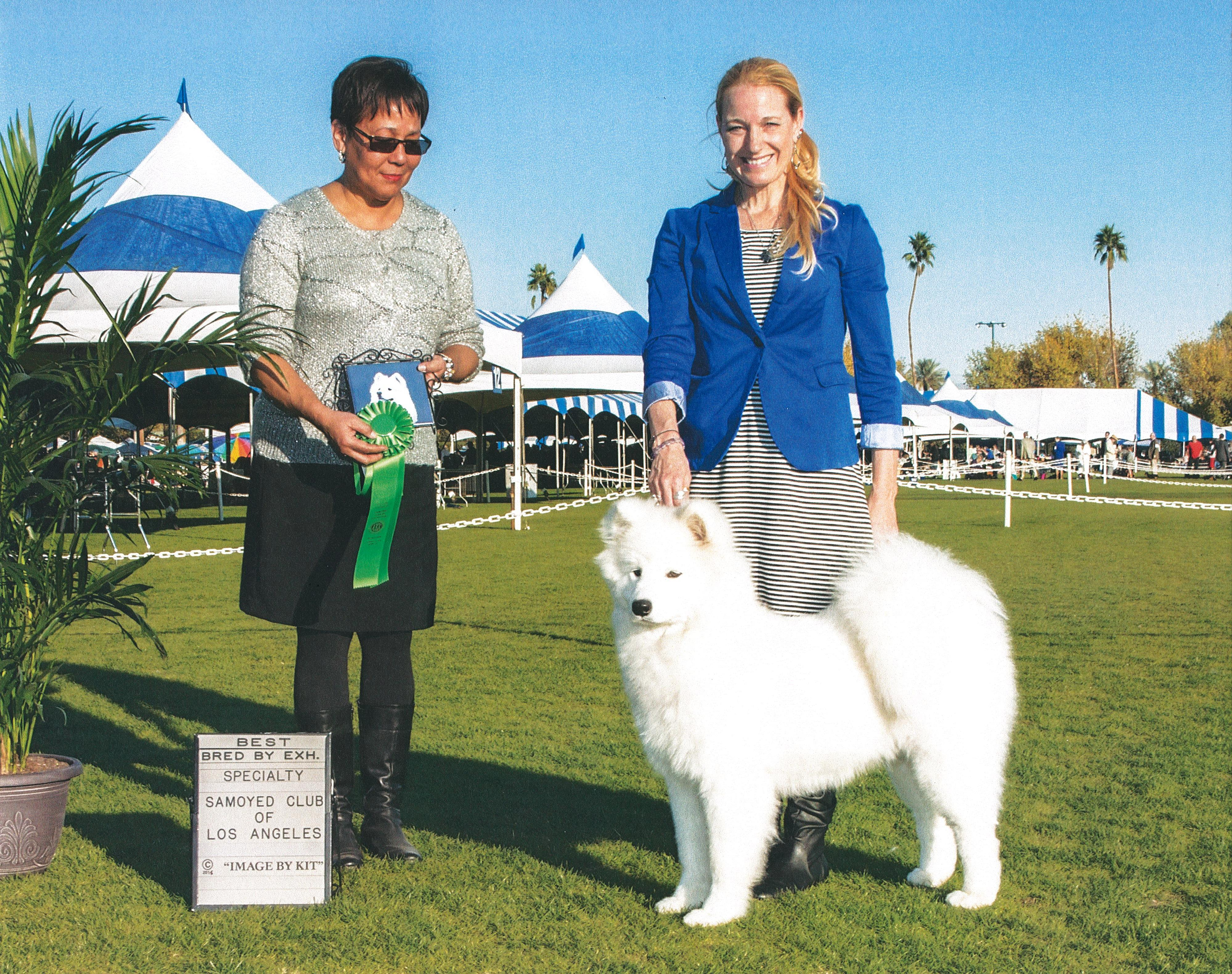 Lacey Best Puppy SCLA 2015