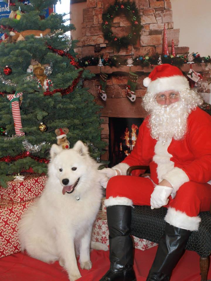 Niko Christmas