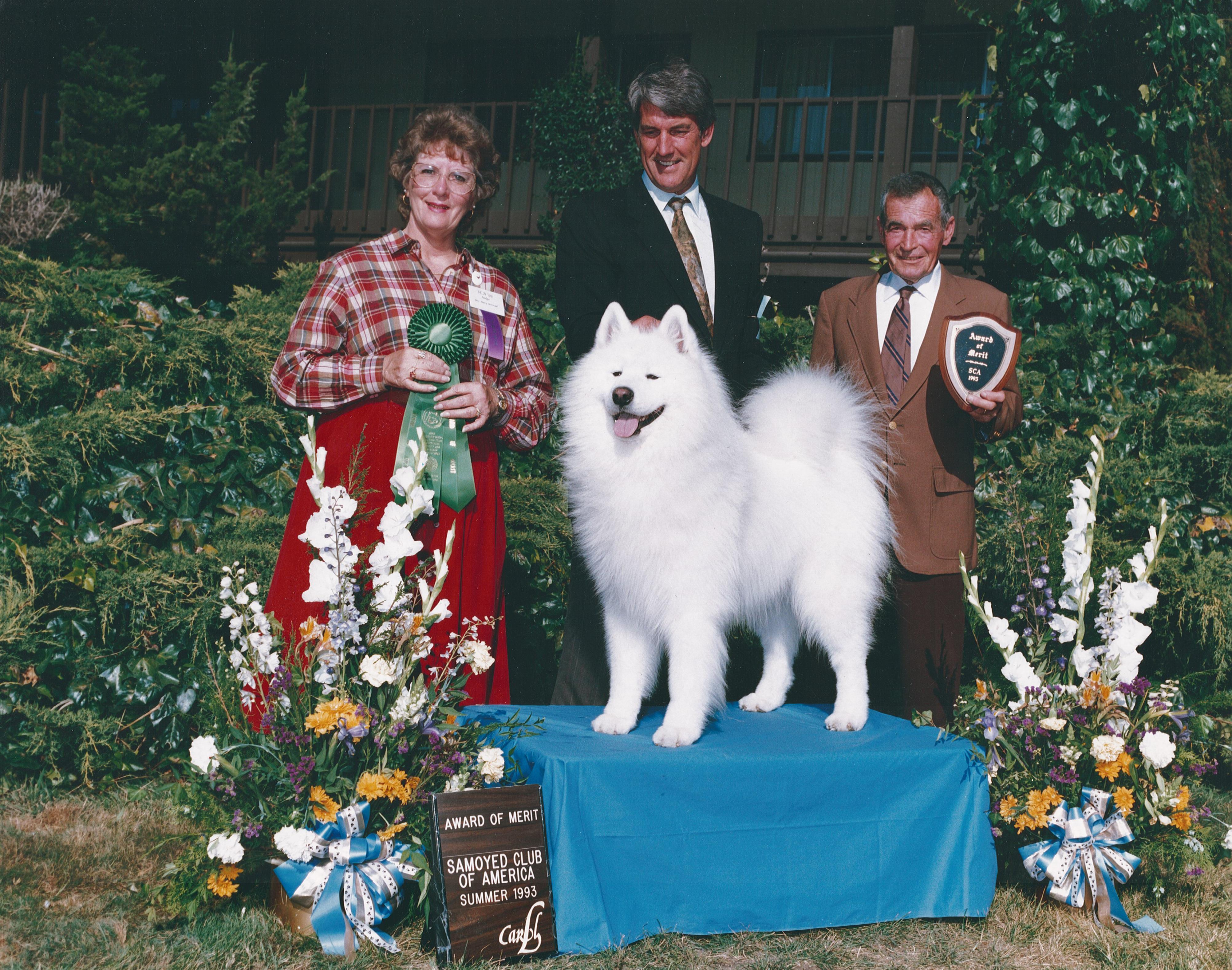aom 1993 national