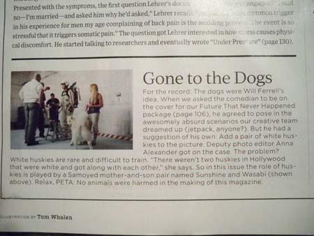 magazine verbage